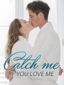 catch me if you love me novel book cover image