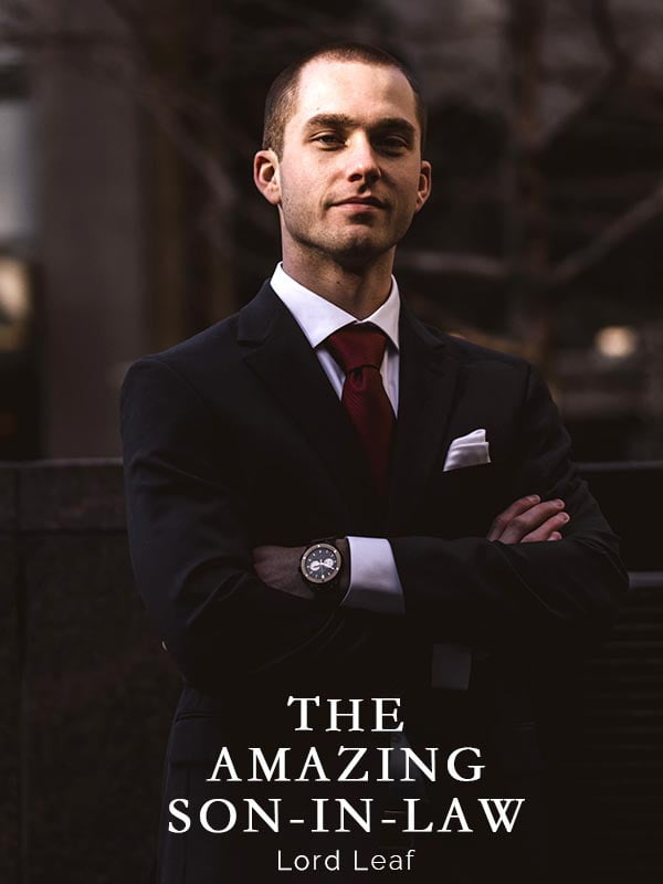 the amazing son in law by lord leaf novel book cover image