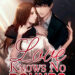 love knows no bounds novel book cover image
