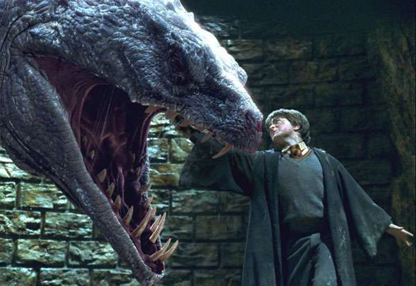 Harry potter against the Basilisk img - potterhead quiz