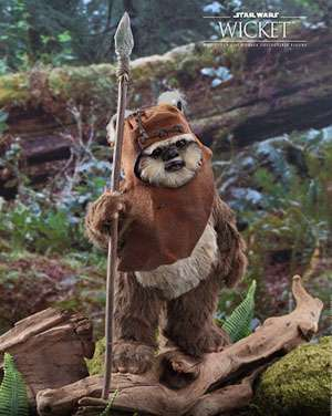 Wicket star wars character image