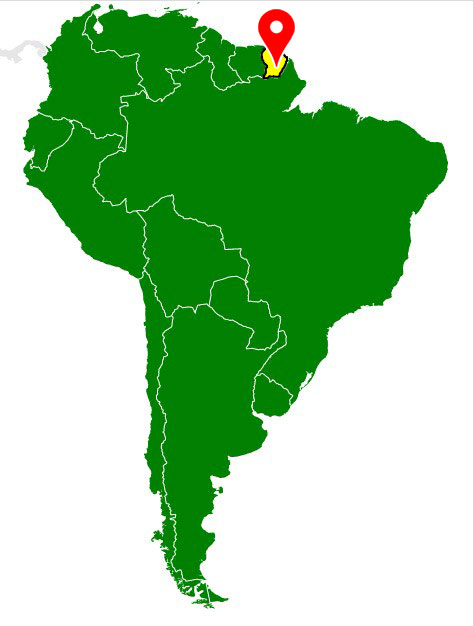 south america map - french-guiana-blank-map