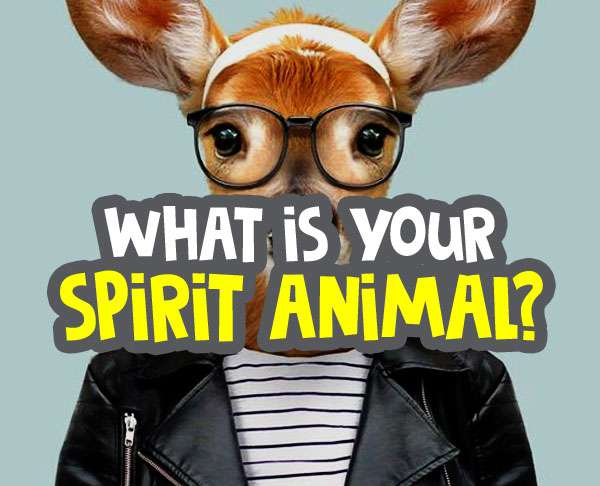 what is my spirit animal quiz featured image