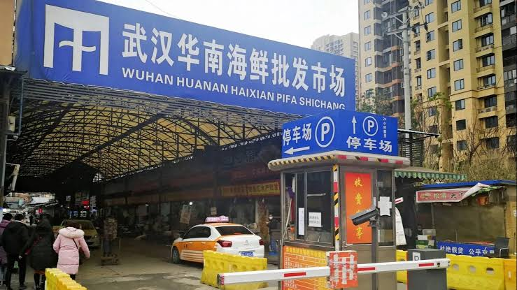 travelling to wuhan market china photo