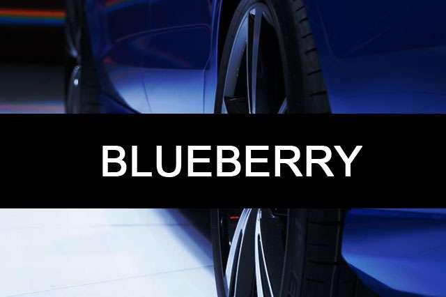 BLUEBERRY-car name photo