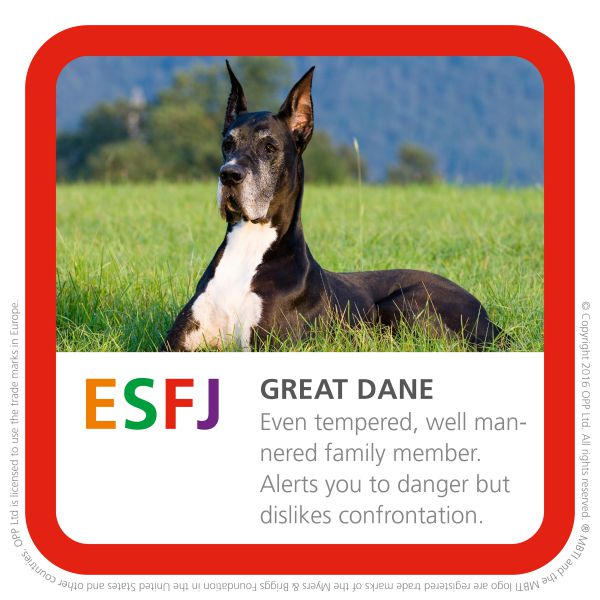 ESFJ great dane dog breed picture