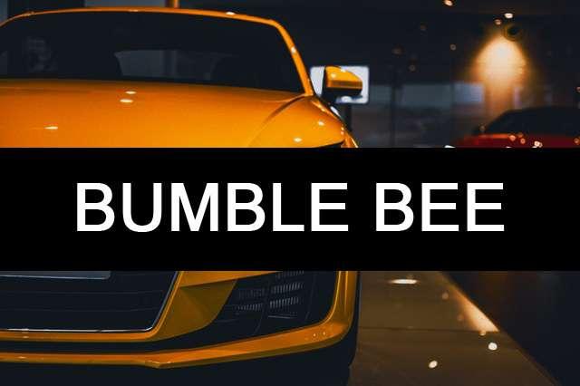 bumble bee car name photo