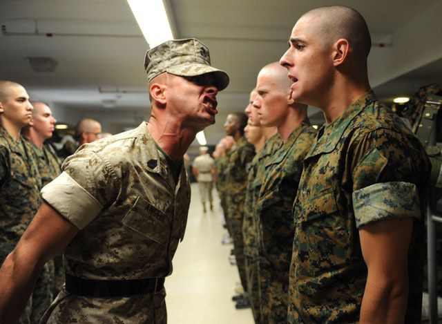 what animal are you quiz - army-authority-drill-instructor-group