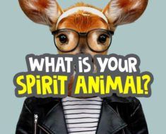what-is-my-spirit-animal-quiz image